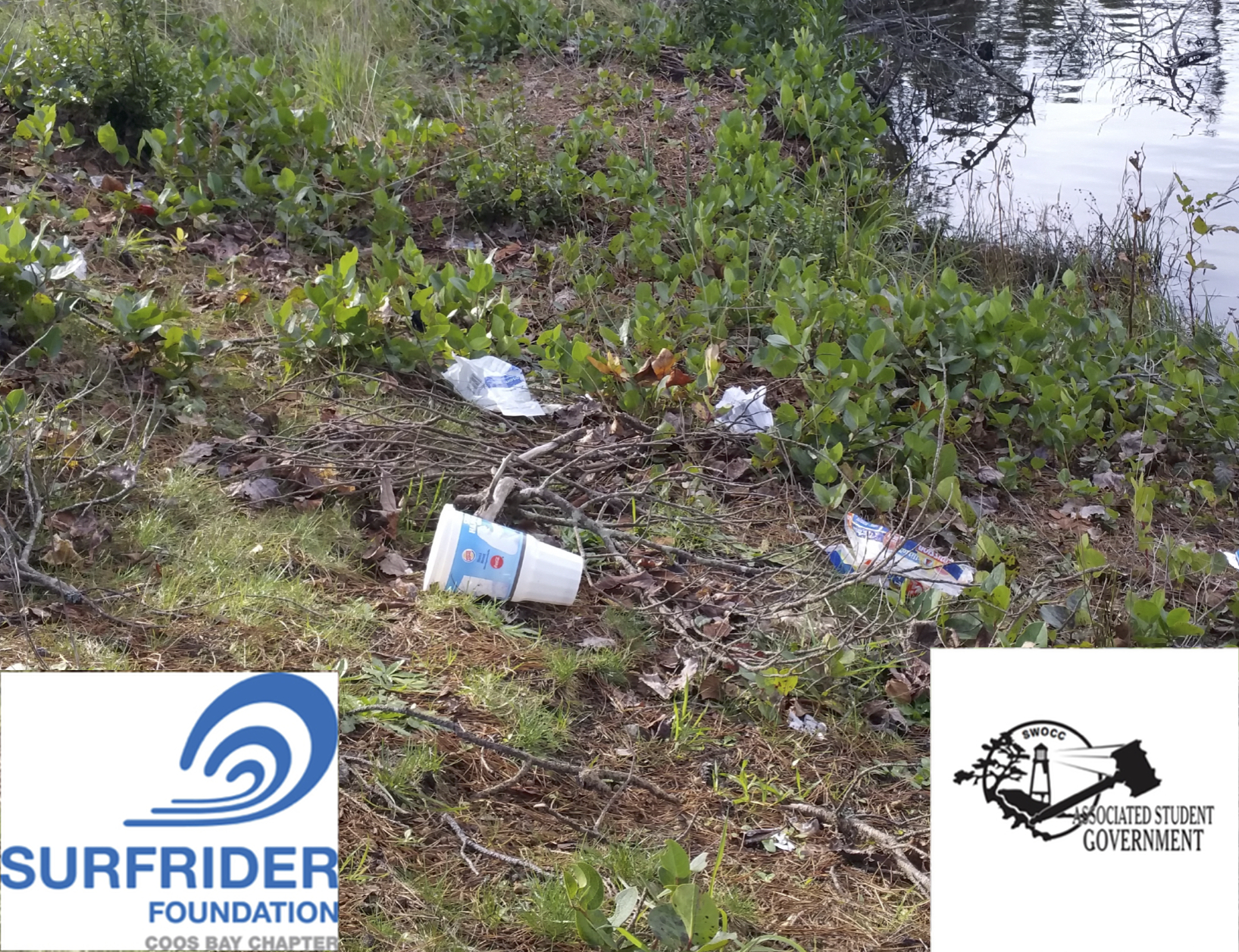 Empire Lakes Cleanup Saturday